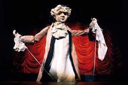 La Journée des Marionnettes + Don Giovanni - aperçu de l'image