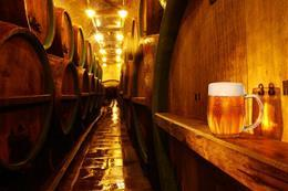 Prague Brewery Tour - preview image