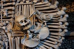 Kutná Hora  - UNESCO with FREE time - preview image