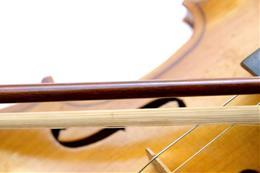 Czech Strings Chamber Ensemble - preview image