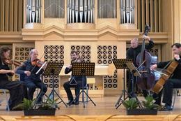 Concert in Lichtenstein Palace - preview image