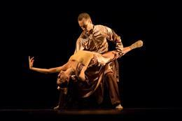 Chamber ballet and music - preview image