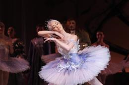 Sleeping Beauty - preview image