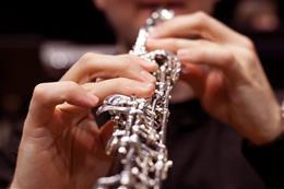 Concert festif de (non seulement) musique baroque - aperçu de l'image