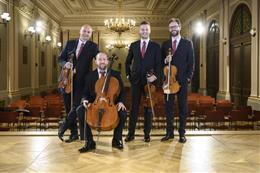 Czech Philharmonic Chamber Ensembles - preview image