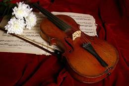 Violin & Organ - preview image