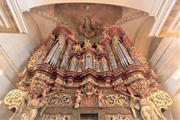 25th International Organ Festival - preview image