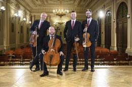 Quatuor de la salle Suk - aperçu de l'image